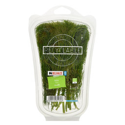 Herbes | Aneth 20g