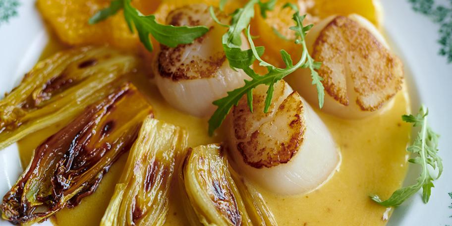 Noix de Saint-Jacques snackées aux chicons, beurre blanc aux agrumes